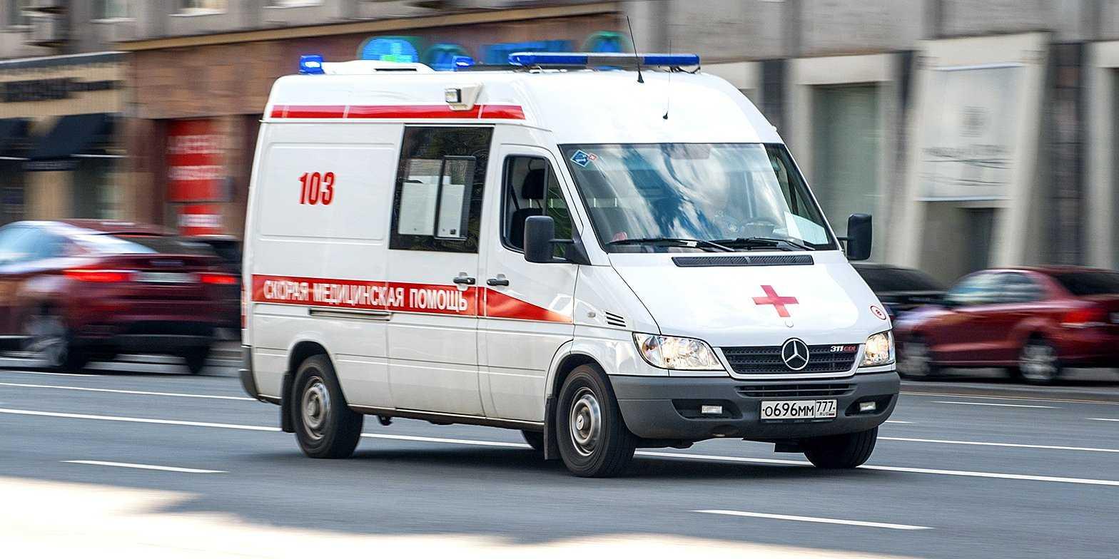 Бабушка и внучка из Москвы умерли, отравившись арбузом