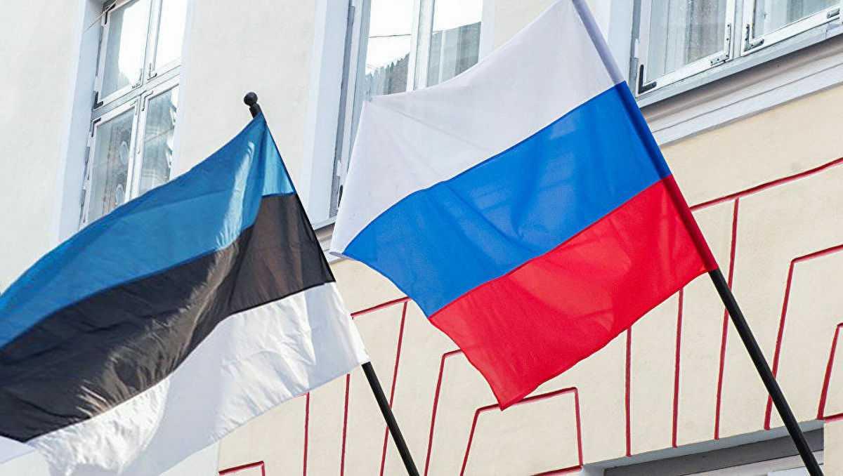 Новый президент Эстонии высказался о будущем русского языка в стране
