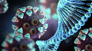 В Роспотребнадзоре рассказали, передается ли коронавирус от животных к человеку