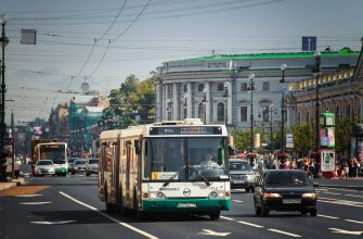 Названы примерные сроки, когда общественный транспорт станет бесплатным