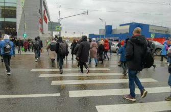 Собянинские каникулы: москвичи будут работать на каникулах