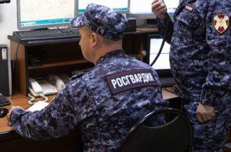 Российские школы охраняться силами Росгвардии не будут, несмотря на инциденты со стрельбой