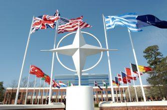 «Собачки США» или почему Прибалтика не рискнет угрожать России оружием